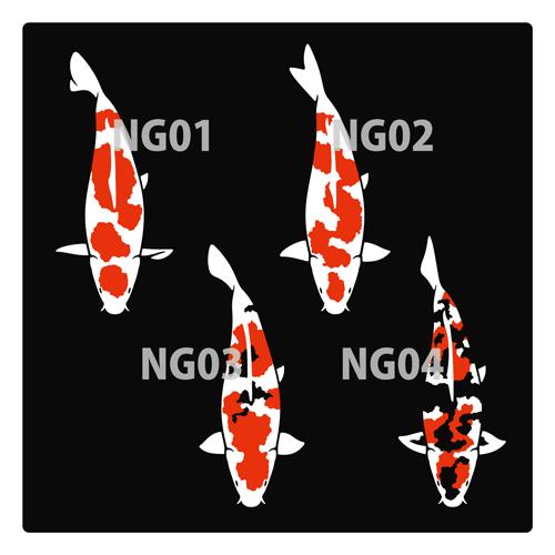 nishikigoi01